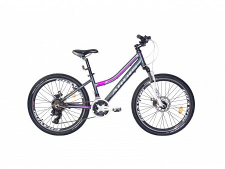 Велосипед ALPINA 24